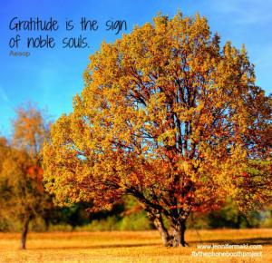 Tree Gratitude - Oct 2015